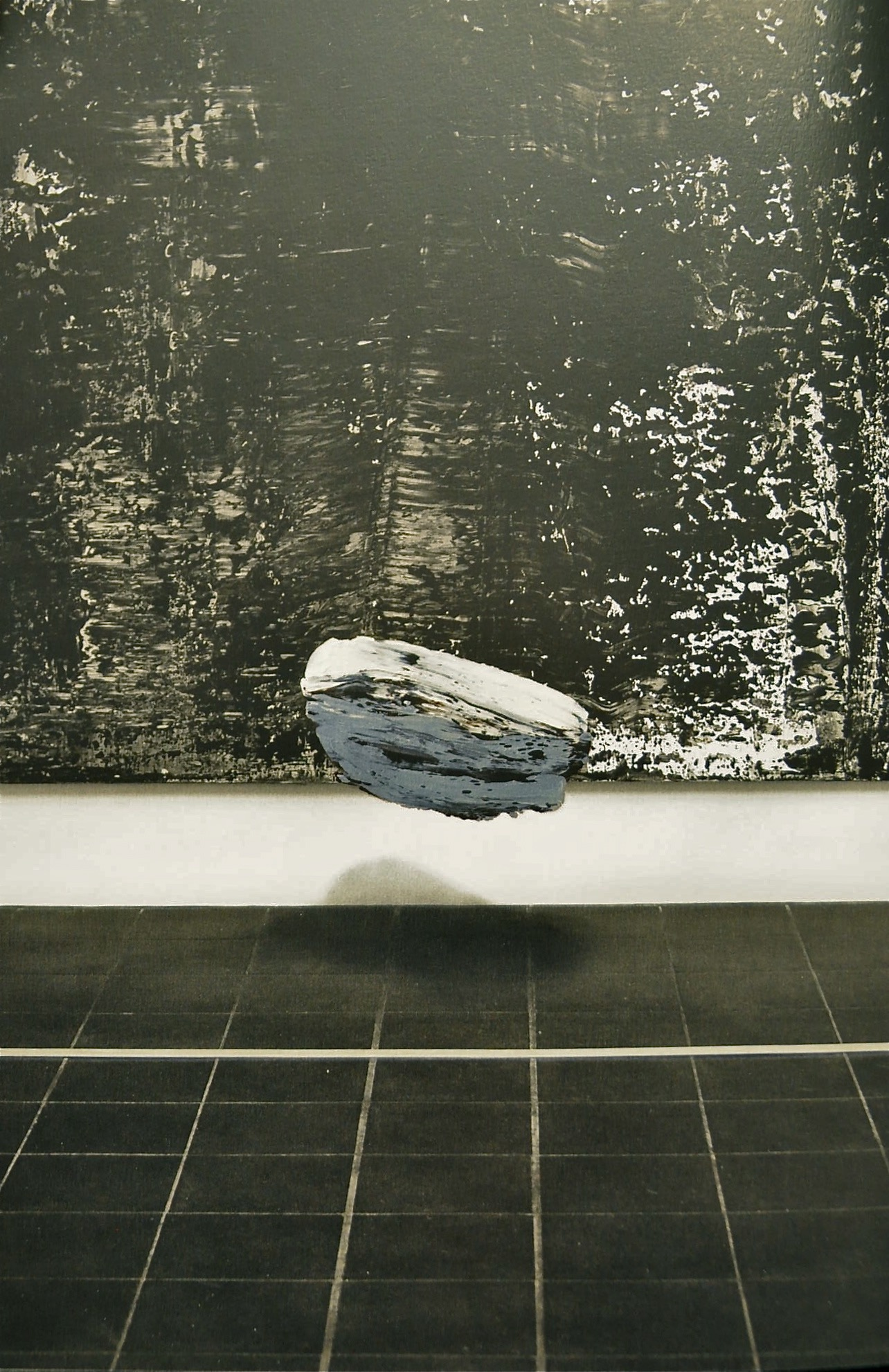 223-5-5 Objekt, Öl auf Silbergelantine-Print, 90x70cm, 2000