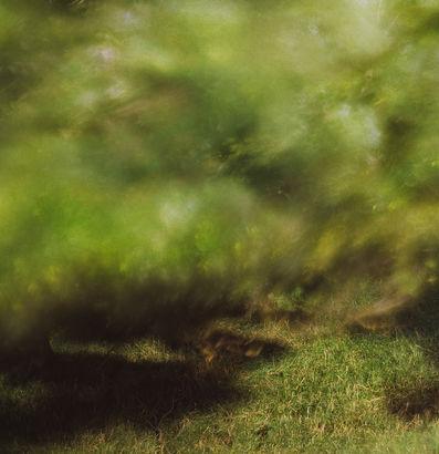MICHAEL WESELY B5230 OSTJAKOBSWARFT, FAHRETOFT (17.27 - 17.32 UHR, 25.7.2009) 2009 c-print, UltraSecG, metal frame, 155 x 150 cm